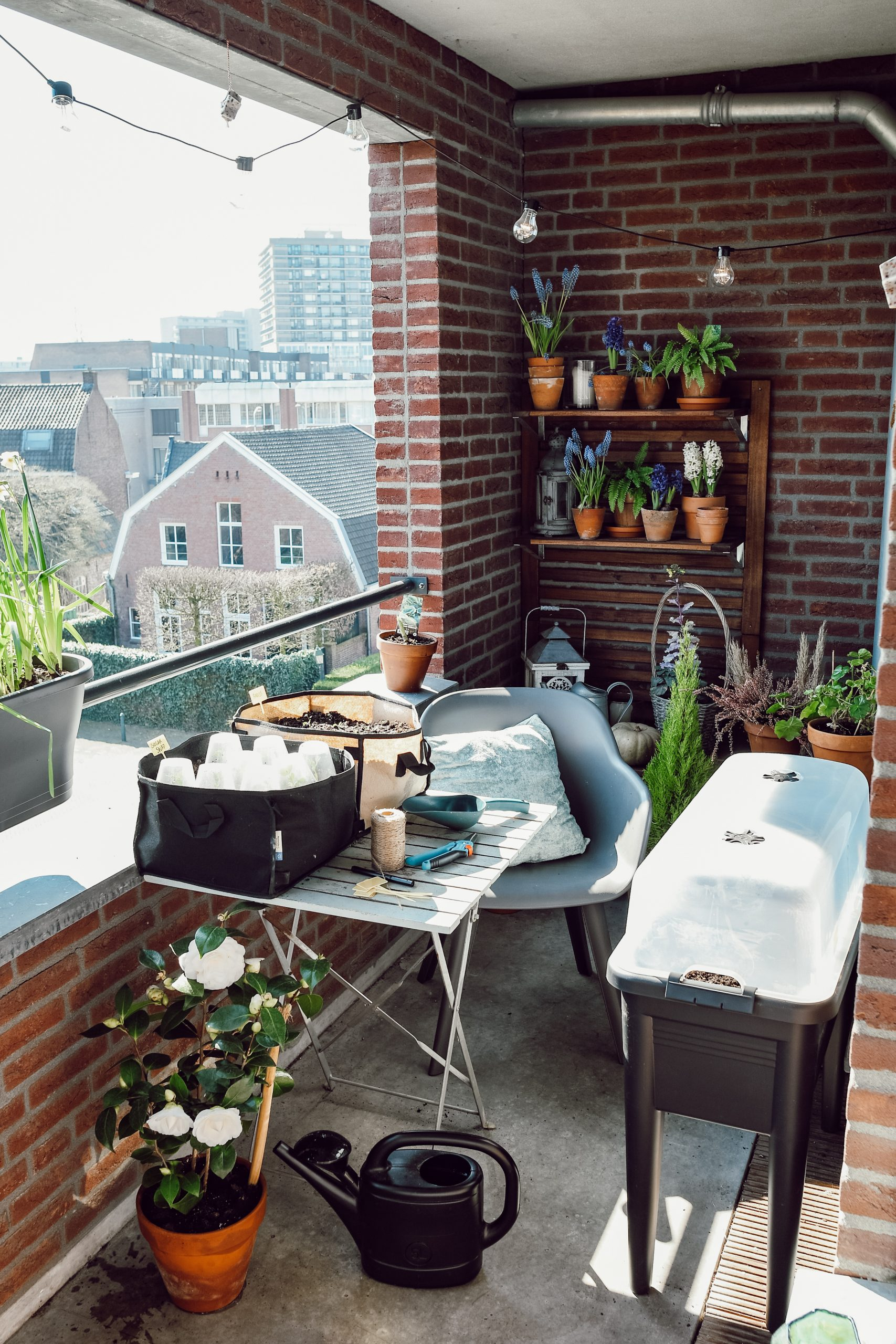 mini moestuin op het balkon