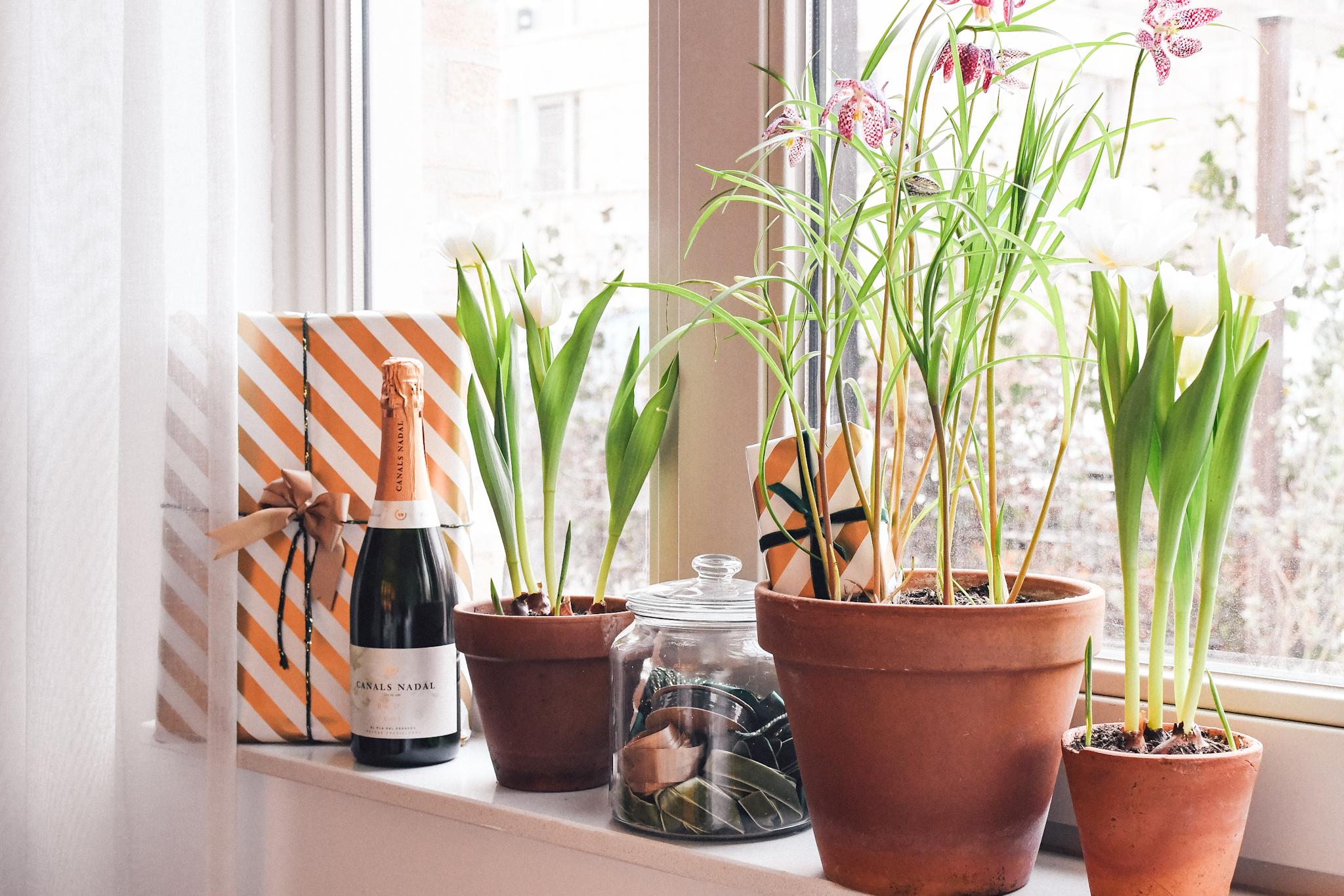 Verjaardag puzzeltocht speurtocht met cadeautjes