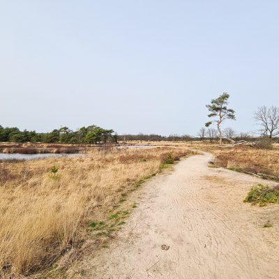 De mooiste wandelplekken in regio Eindhoven
