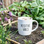 Moestuindagboek | Succesjes, mislukkingen & de eerste oogst!