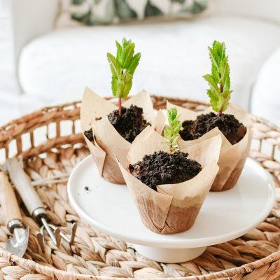 Chocolade 'Moestuin' cupcakes